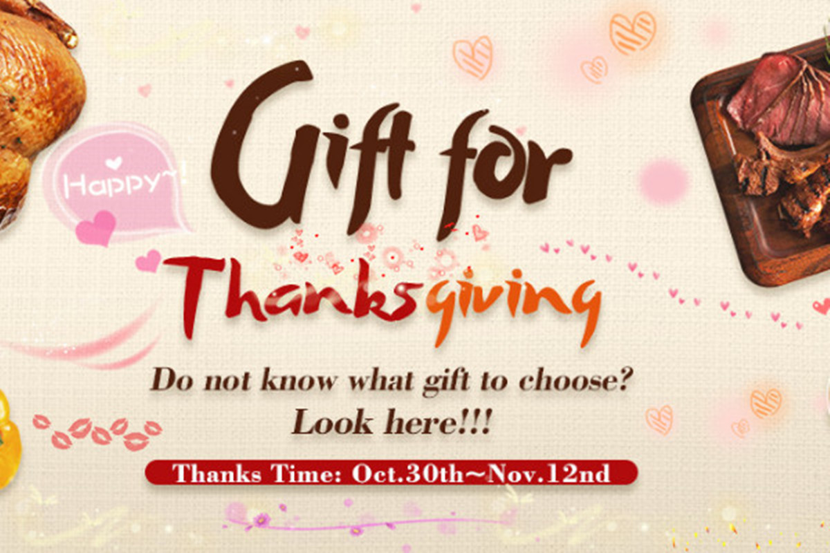 Find the Best Gifts in Newchic 2017 Thanksgiving Sale, Extra 15% Off!