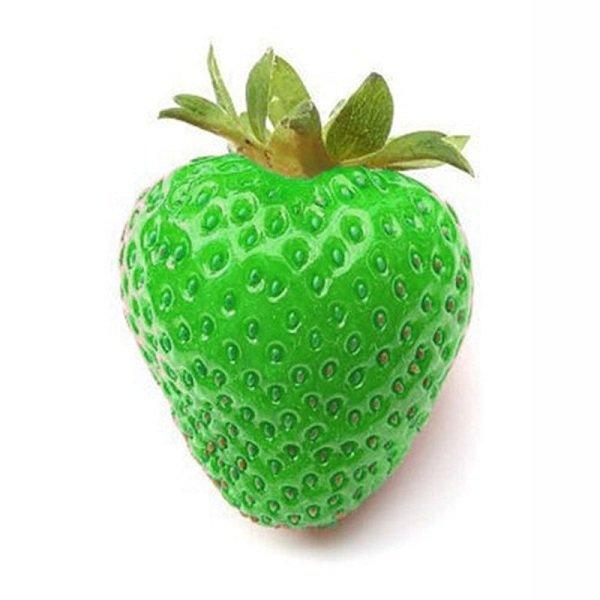 green strawberry seeds erdbeersaison