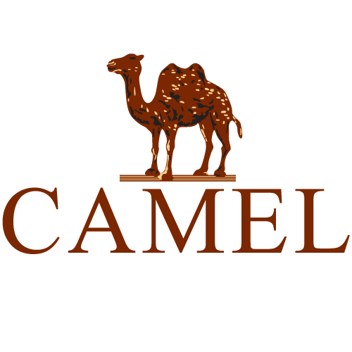 Newchic Camel Crown
